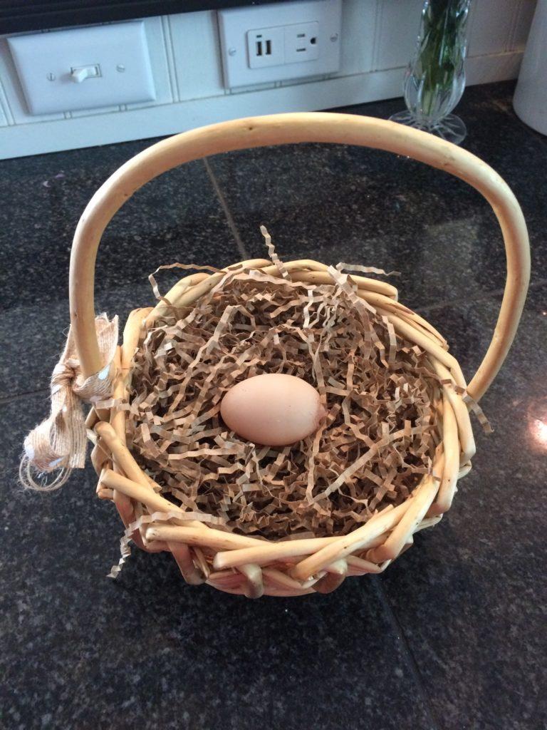 Chicken's first fairy egg in basket