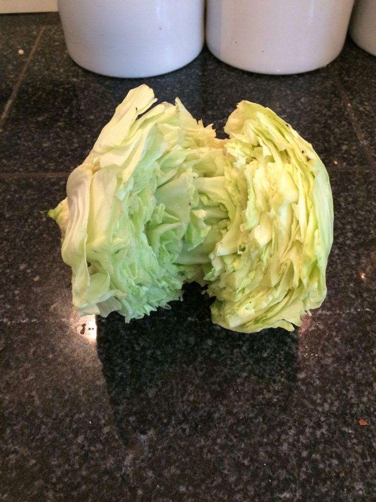 Rabbit eaten cabbage