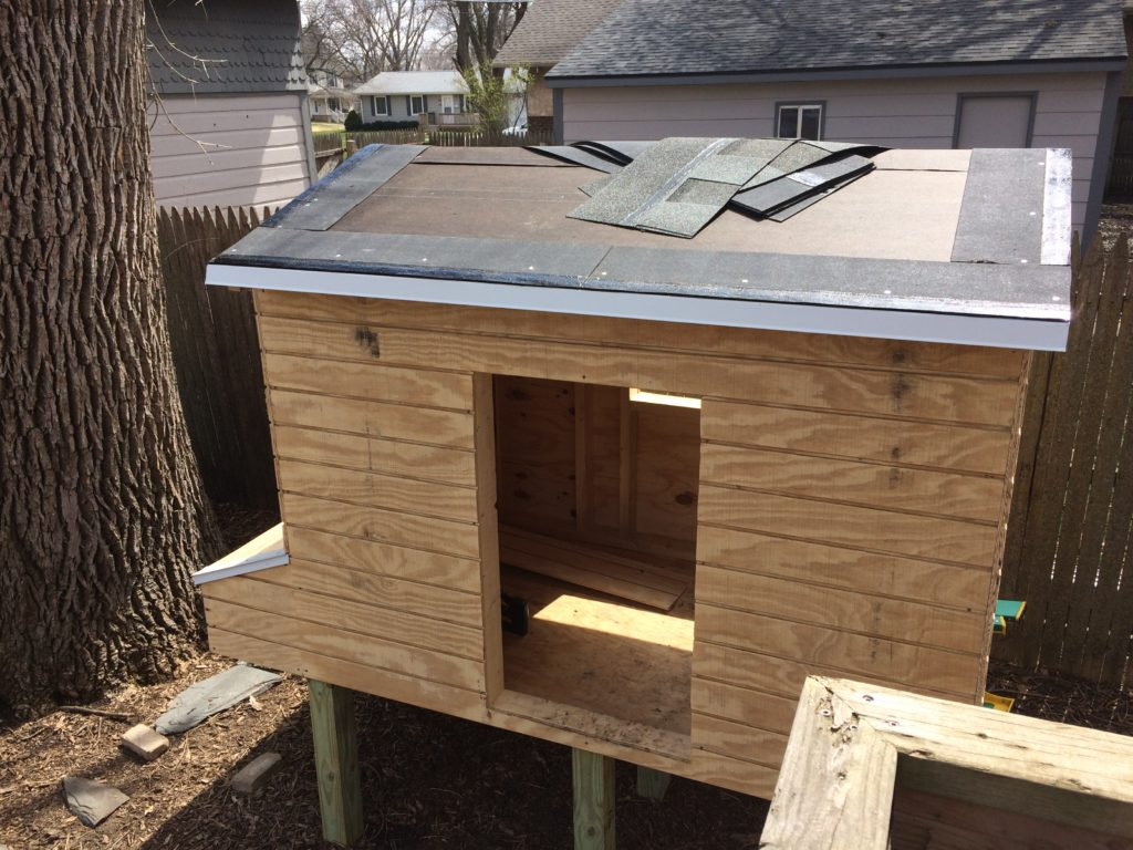Shingling the chicken coop roof