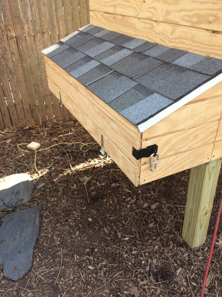 Nest box locks on chicken coop