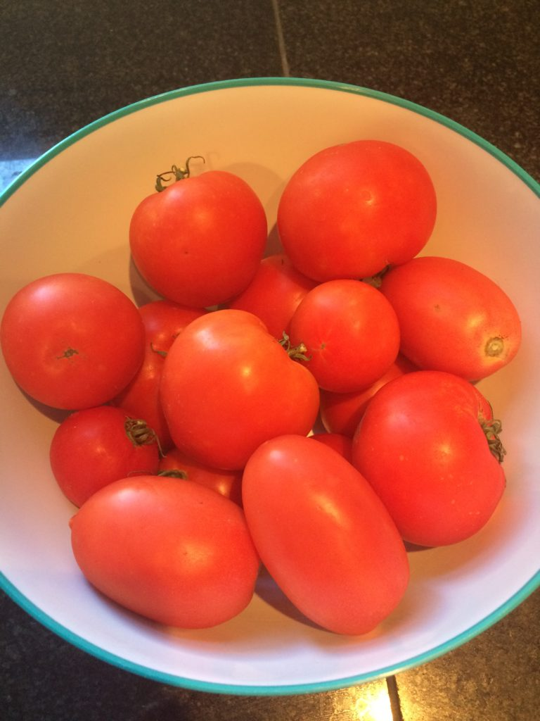 Tomatoes ready to make sauce